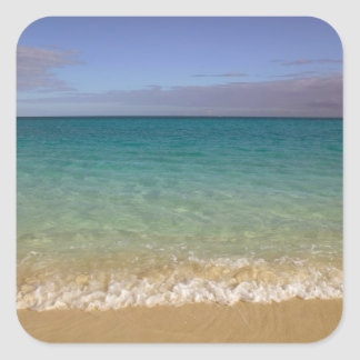 Turks and Caicos, Providenciales Island, Grace 2 Square Sticker
