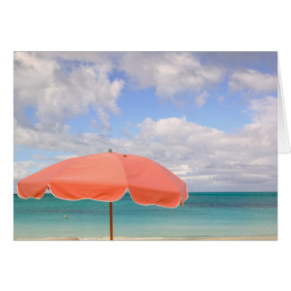 Turks and Caicos, Providenciales Island, Grace Card