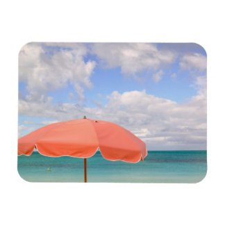 Turks and Caicos, Providenciales Island, Grace Rectangular Magnet