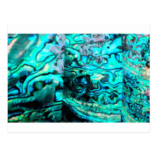 Turquoise abalone paua shell detail postcard