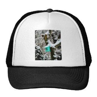 Turquoise Birdhouse in Winter Trucker Hats