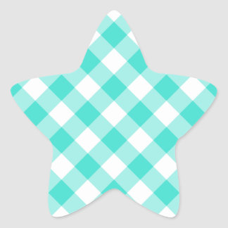 Turquoise Gingham Pattern Star Sticker