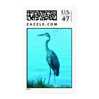 Turquoise Heron Egret Postage