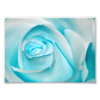 Turquoise Ice Rose Photographic Print