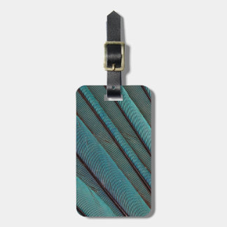 Turquoise Kingfisher Feather Design Luggage Tag