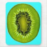 Turquoise Kiwi