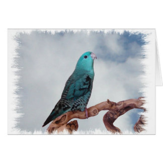 Turquoise linnie greeting card