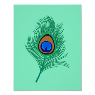 Turquoise Peacock Feather on Light Aqua Poster