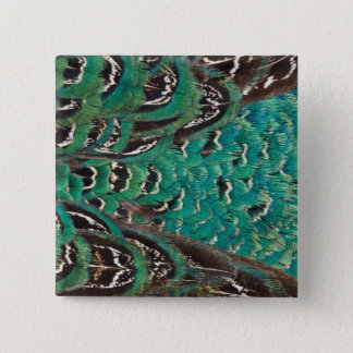 Turquoise Pheasant Feather Detail 15 Cm Square Badge