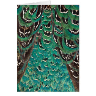 Turquoise Pheasant Feather Detail Card