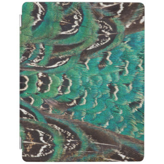Turquoise Pheasant Feather Detail iPad Cover
