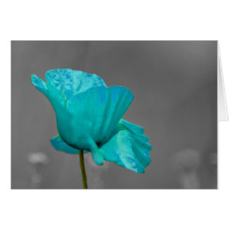 Turquoise Poppy flower Greeting Card