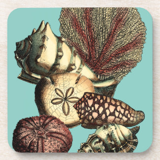 Turquoise Shell and Red Coral Collection Coaster