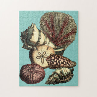 Turquoise Shell and Red Coral Collection Jigsaw Puzzle