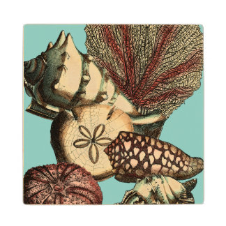 Turquoise Shell and Red Coral Collection Wood Coaster