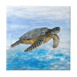 Turtle 1 small square tile