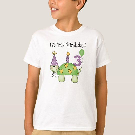 Turtle 3rd Birthday T-Shirt
