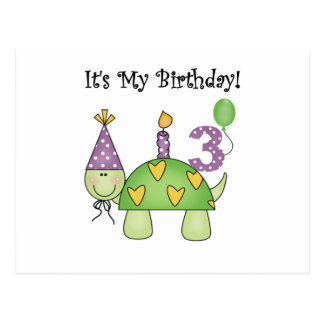 Turtle 3rd Birthday Tshirts and Gifts Postcard
