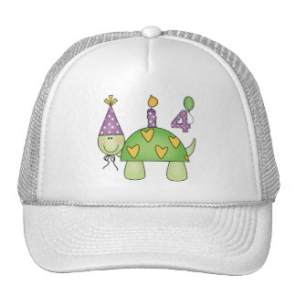 Turtle 4th Birthday Gifts Mesh Hat