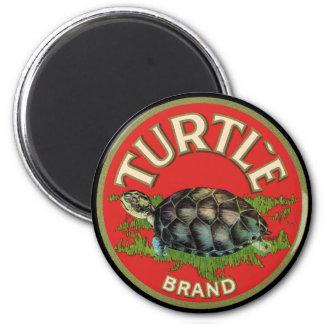 Turtle 6 Cm Round Magnet
