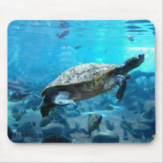 Turtle and fish mouse mat