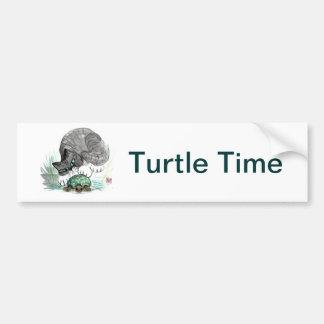 Turtle and Tiger Kitten Bumper Sticker