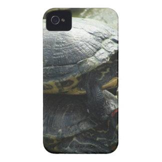 Turtle Animals iPhone 4 Case-Mate Case