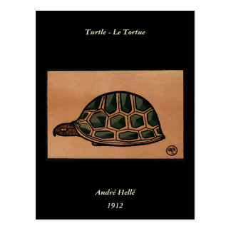 Turtle - Antiquarian, Colorful Book Illustration Postcard