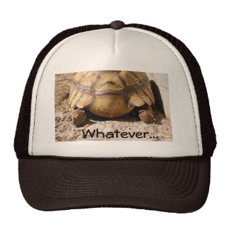 Turtle Butt Design Cap