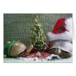 Turtle Christmas Cards