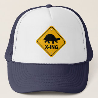 Turtle Crossing Hat