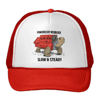 Turtle Engine Hat