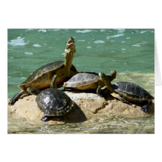 Turtle family card