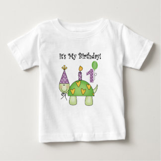 Turtle First Birthday Tshirts and Gifts