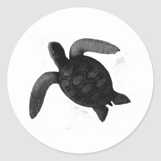 Turtle Grey The MUSEUM Zazzle Gifts Round Sticker