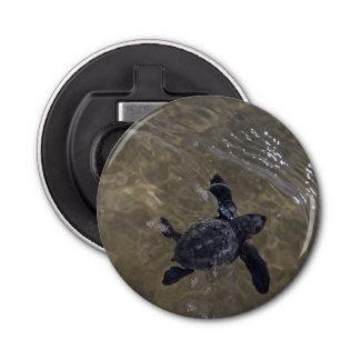 Turtle hatchlings 2 bottle opener