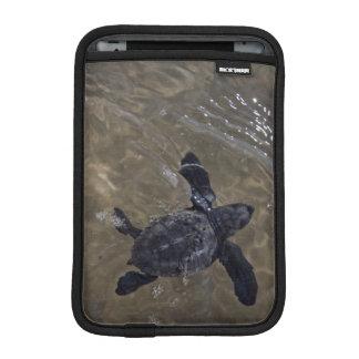 Turtle hatchlings 2 iPad mini sleeve