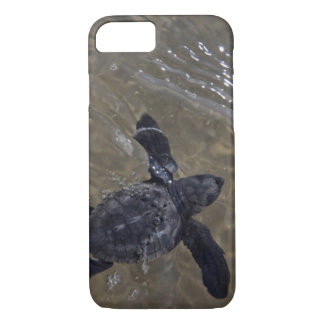 Turtle hatchlings 2 iPhone 8/7 case