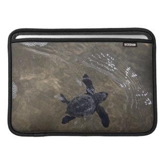 Turtle hatchlings 2 sleeve for MacBook air