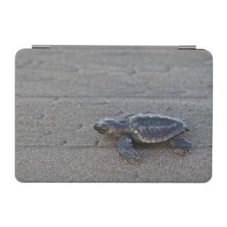 Turtle hatchlings iPad mini cover