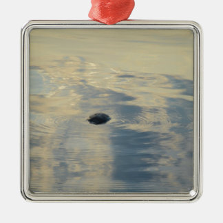 Turtle In Calm Sea Silver-Colored Square Decoration