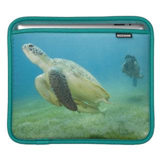 Turtle iPad Sleeve
