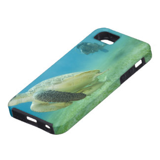 Turtle iPhone 5 Covers
