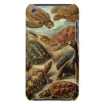 Turtle iPod Touch Barely There Case iPod Case-Mate Case