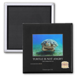 Turtle Is Not Angry Magnet