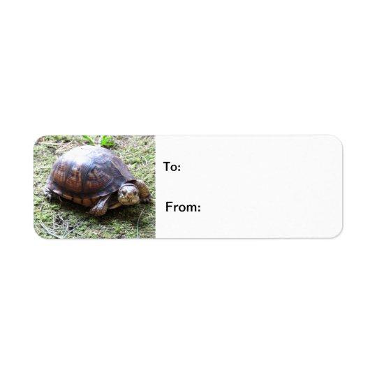 Turtle - Mossy Path Return Address Label