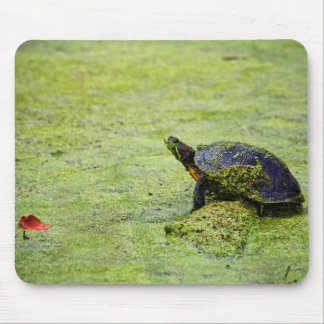 """Turtle"" Mouse Mat"