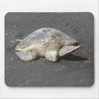 Turtle Mousepad