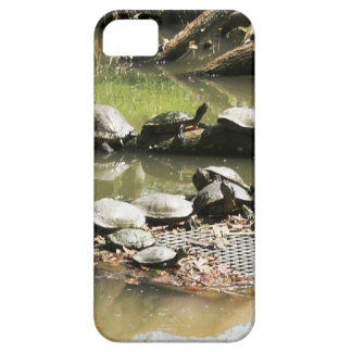 Turtle Network iPhone 5 Covers