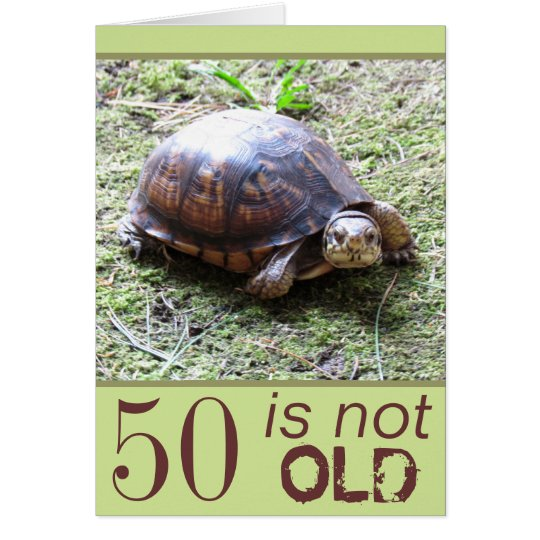 Turtle - Not Old -  Birthday Card